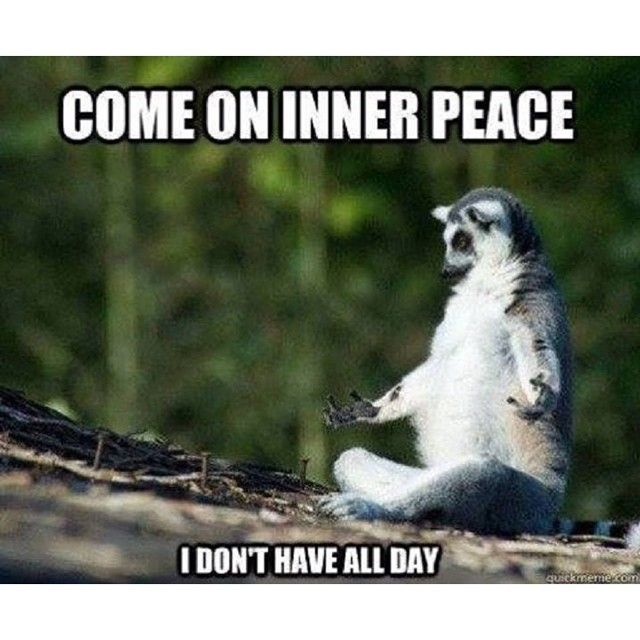 come-on-inner-peace-yoga-memes