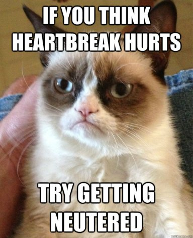 If-you-think-heartbreak-hurts